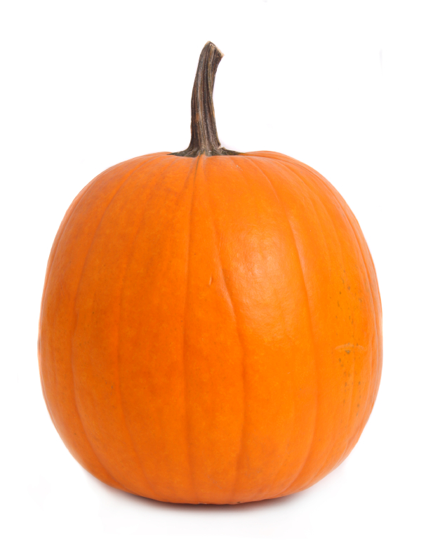 Perfect pumpkin isolated. ©iStockphoto.com/Ju-Lee